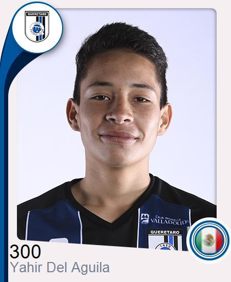 Yahir Del Aguila Guerrero