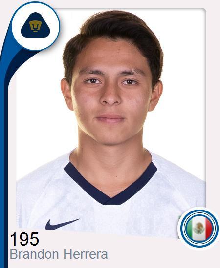 Brandon Alberto Herrera Hernández