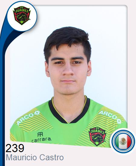 Mauricio Gael Castro Alanís