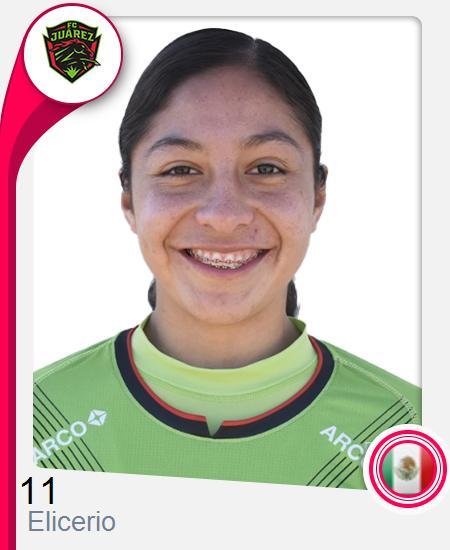 Silvia Elicerio Castillo