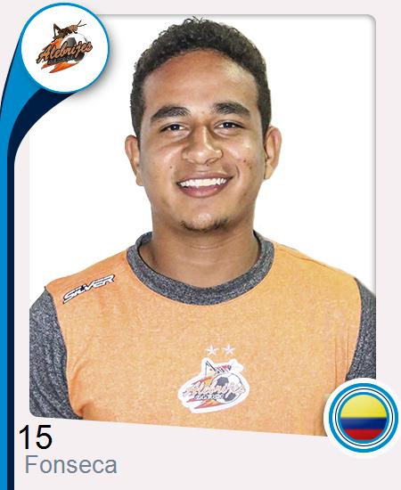 Carlos Andrés Fonseca Castro