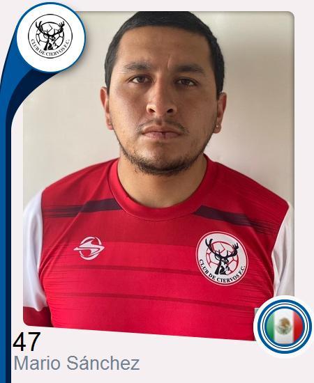 Mario Iván Sánchez Martínez