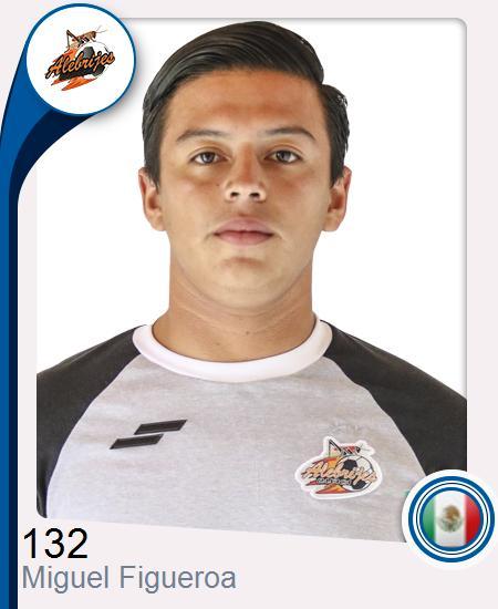 Miguel Ángel Figueroa Toledo