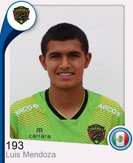 Luis Fernando Mendoza Torres