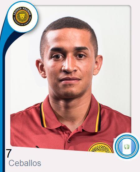 Marvin José Ceballos Flores