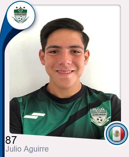 Julio Alexis Aguirre Campos