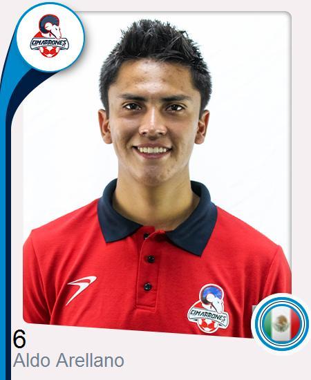 Aldo Misael Arellano Miranda