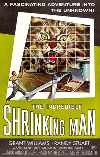 The Incredible Shrinking Man: A cinematic nightmare both ...