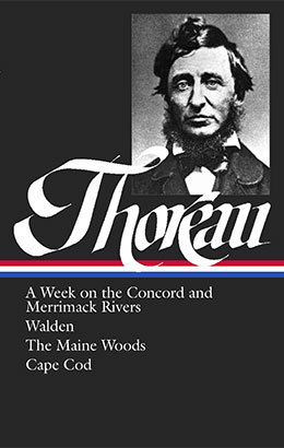Doctor l  ser     Henry david thoreau civil disobedience essays about