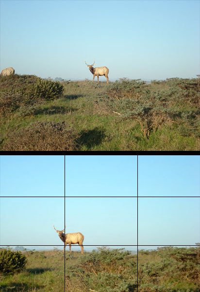 Rule of Thirds photography technique