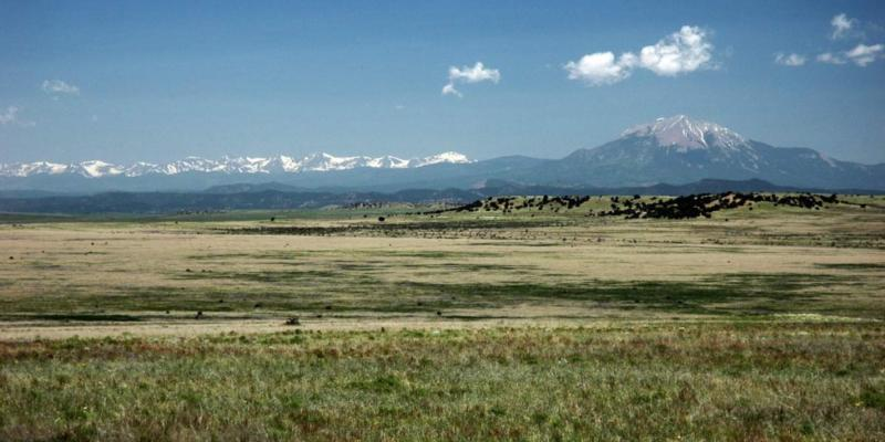 A grassy field in the foreground with a herd of animals in front of a mountain in the background.