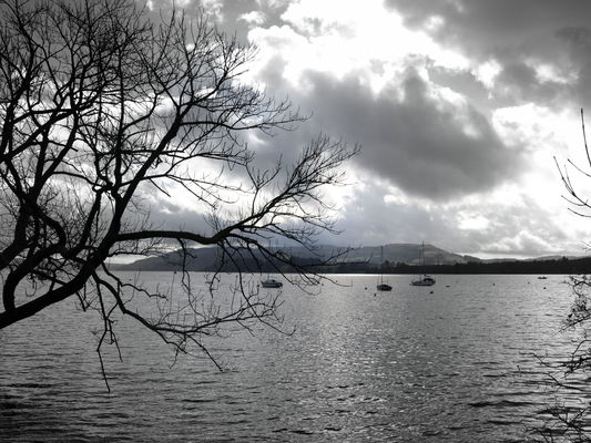 Seasonal picture of Lake Windermere in Cumbria. uk, england, tree, wet, water, pool, weather, clouds, season, spring, nice, scenery, place, cloudy, grim, north, scenic, stormy, visit, location, cumbria, bleak, serene, scenes, cumberland, lakewindermere, thelakes, ©2014tonyworrall. buy photo