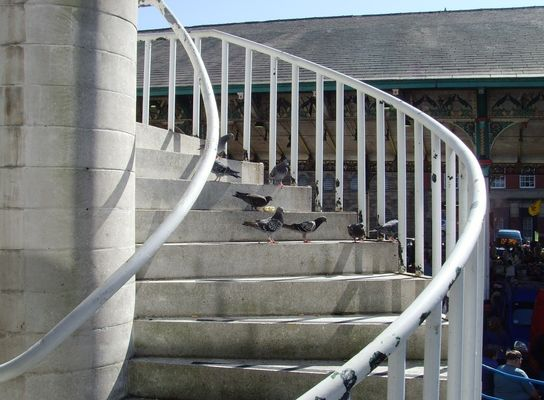 Steps near the Covered Market, Preston. city, uk, england, stairs, spiral, northwest, north, steps, lancashire, preston, upnorth, itsgrimupnorth, nv3, prestonian. buy photo