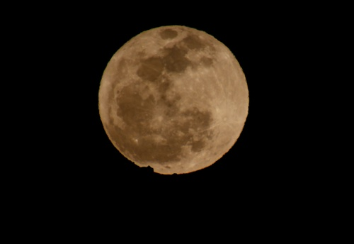 The Worm Moon ( Luna del gusano ). moon, night, noche, luna, fullmoon, cadiz, lunallena, wormmoon, facinas. buy photo