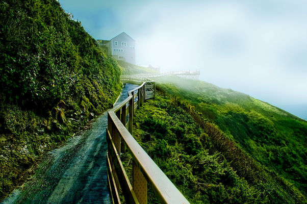The Fog is Rising. sea, sky, fog, oregon, fence, florence, lion, caves. buy photo