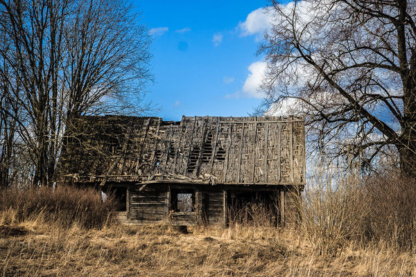 Abandoned wooden house. wood, trees, house, building, abandoned, decay, ilobsterit. buy photo