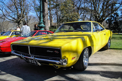 Charger R/T. park, old, france, square, automobile, jardin, grand, voiture, american, dodge, transports, toulouse, rt, charger, musclecar, ancienne, rond, 2014, véhicule, américaine, boulingrin. buy photo