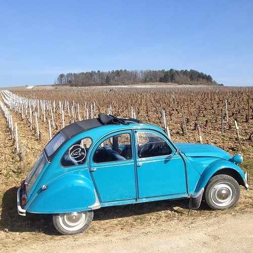 My tour guide through the vineyards of #Chablis has one sweet ride. #gjb2014. square, squareformat, iphoneography. buy photo