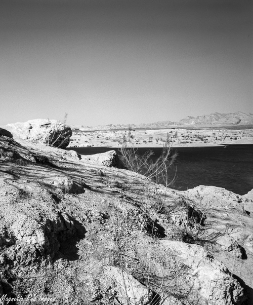 Lake Mead. west, landscape, lasvegas, nevada, lakemead, delta100, largeformat, ilforddelta100, caffenol, standdeveloped, homemadecaffenol, toko4x5fieldcamera. buy photo