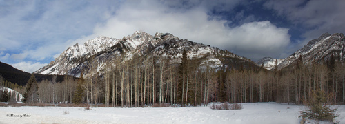Panorama1. trees, sky, panorama, snow, canada, mountains, clouds, landscape, rockies, landscapes, nationalpark, scenery, scenic, snowcapped, alberta, banff, winterscene. buy photo