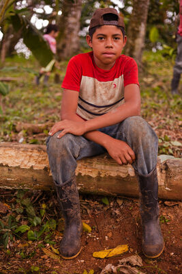 At the Cacao Plantation | Nicaragua. boy, guy, latinamerica, kids, america, canon, children, kid, chocolate, 5d, nicaragua, canon5d, managua, choco, ngo, centralamerica, chocolade, cacao, beyondborders, kidportrait, snv, guyportrait, cacaoplant, canon5dmarkii, 5dmark, cacaoplantation, latinkid, beyondbordersmedia, beyondbordersutrecht, snvworld, ngoproject. buy photo