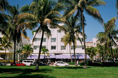 The Carlyle Hotel South Beach. film, beach, analog, 35mm, fuji, florida, miami, south, 200, sobe, c41. buy photo