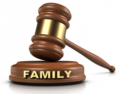 Family Law Firm 140 Metro Park, Rochester, NY 14623