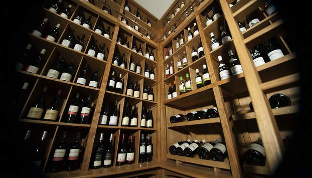 Visit a wine cellar and taste some great wines with explanation