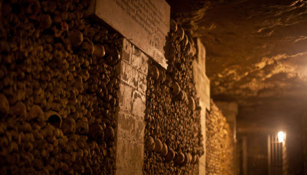 Paris Catacombs wall of bones in our Private tour