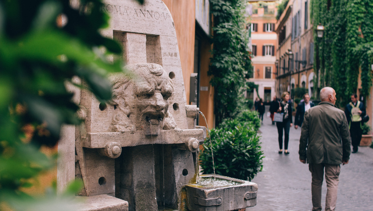 Best Of Rome Half Day Private Tour