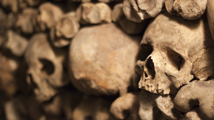 Photo of skulls on our Catacombs Tour