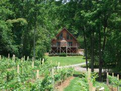 Paradise Hills, Winery Resort & Spa