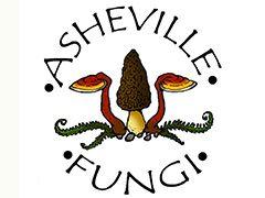 Asheville Fungi