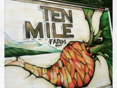 Ten Mile Farm