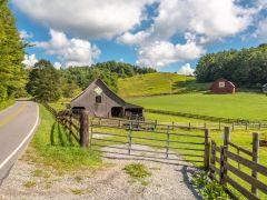 Carringer Farms