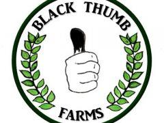 BlackThumb Farms