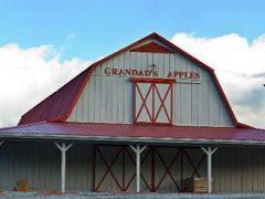 Grandad's Apples