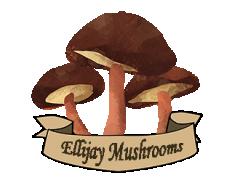 Ellijay Mushrooms