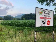 Ramsey Dairy Farm
