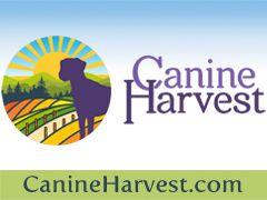 Canine Harvest