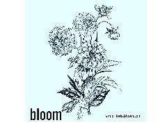 Bloom WNC