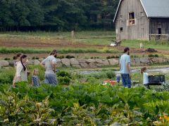 Gladheart Farm