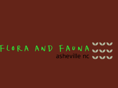 Flora and Fauna AVL