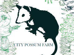City Possum Farm