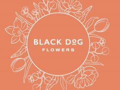 Black Dog Flowers