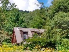 Woodland Harvest Mountain Farm