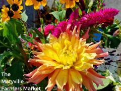 Maryville Farmers' Market