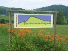 Tiger Mountain Vineyards
