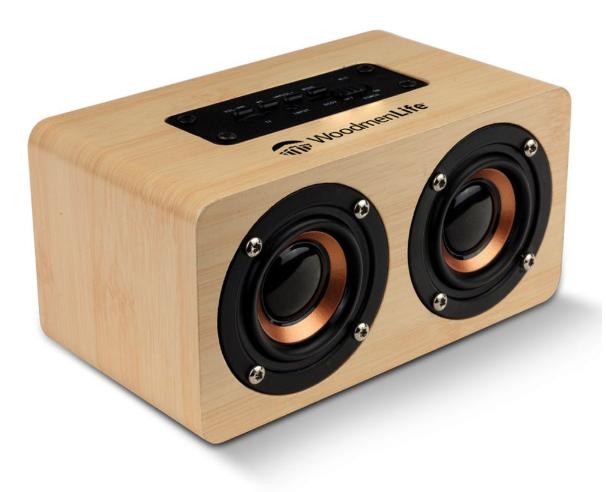 DoubleDip Bluetooth Speaker