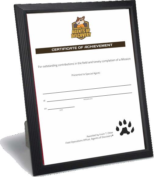 Certificate Frame 2